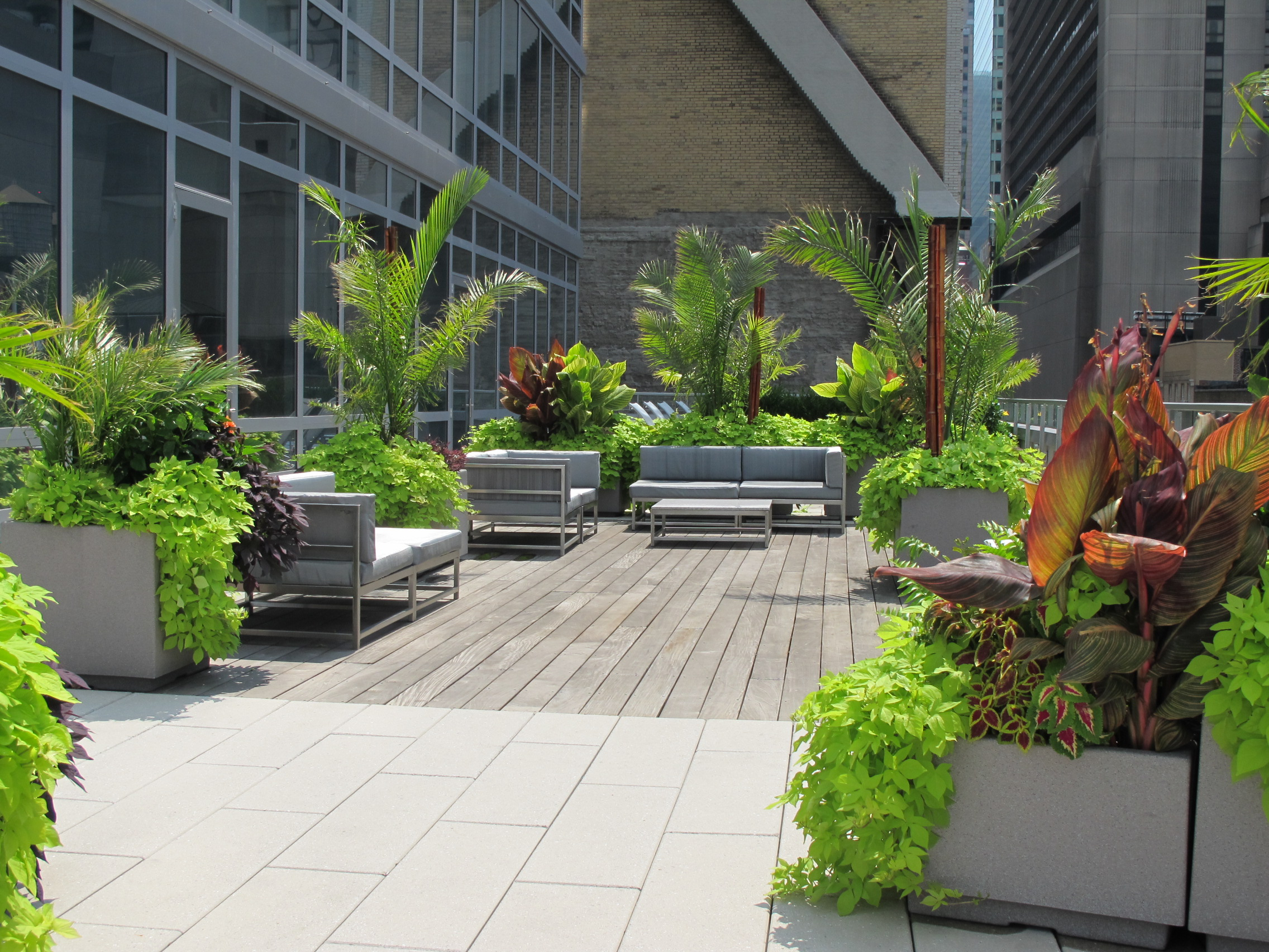 Tropical roof deck city gardens of ny for Landscape gardeners